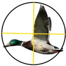 The Duck Hunting Game for PC